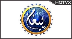 Paigham PK tv online mobile totv