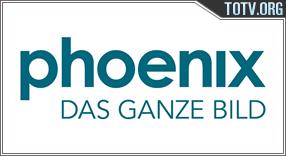 Phoenix tv online mobile totv