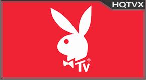 Watch Playboy TV