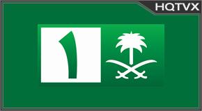 Saudi 1 Totv Live Stream HD 1080p