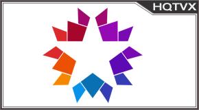Star Canlı Yayın Totv Live Stream HD 1080p
