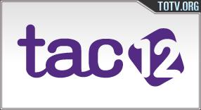 TAC 12 tv online mobile totv