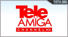 Teleamiga Colombia tv online mobile totv