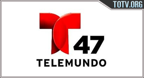 Telemundo New York 47 Puerto Rico tv online mobile totv