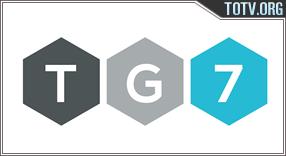TG7 tv online mobile totv