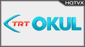 TRT Okul tv online mobile totv