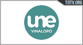 Une Vinalopó tv online mobile totv