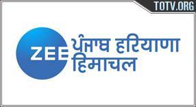 Zee Punjabi tv online mobile totv