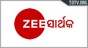 Watch Zee Sarthak