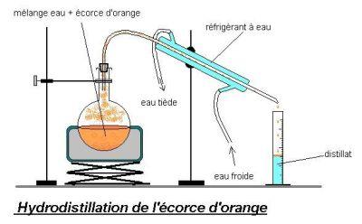 Huile Essentielle Extraction Et Comparaison
