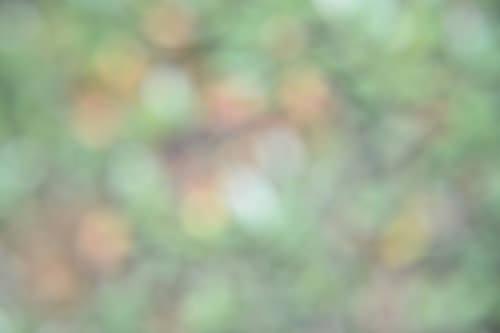 9.bild abstract