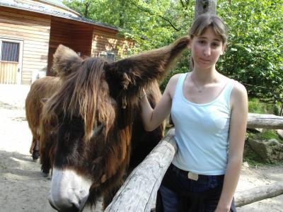 Nen behaartes Tier(rechts) und nen Pferd(links) (is aber nur Spaß,also bitte nicht beleidigt fühlen)