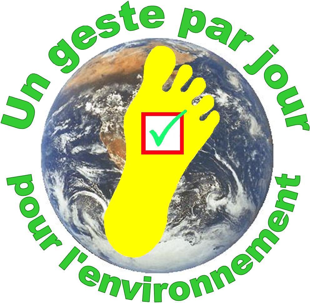 Ville Monde Environnement