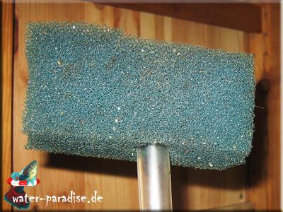 Wasserabsaugschlauch mit Filter