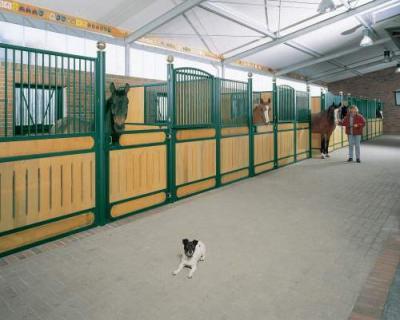 Luxus Pferdestall das reiter und pferdeparadies stallungen