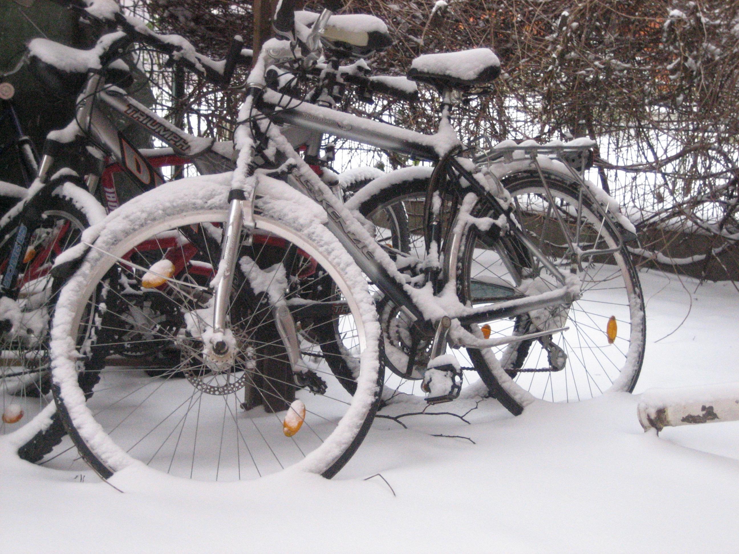 Winterruhe 2009