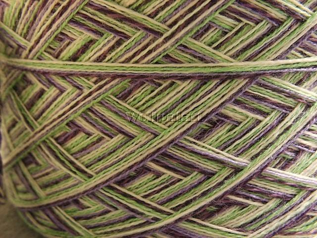 Kiwi Pflaume