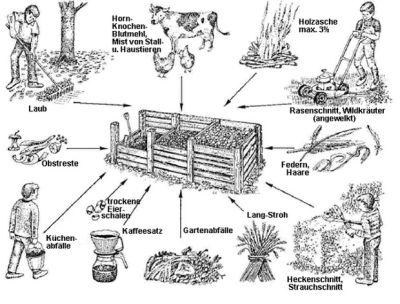 Kompostwürmer angelköder angelwürmer kompostwürmer futterwürmer wurmhumus