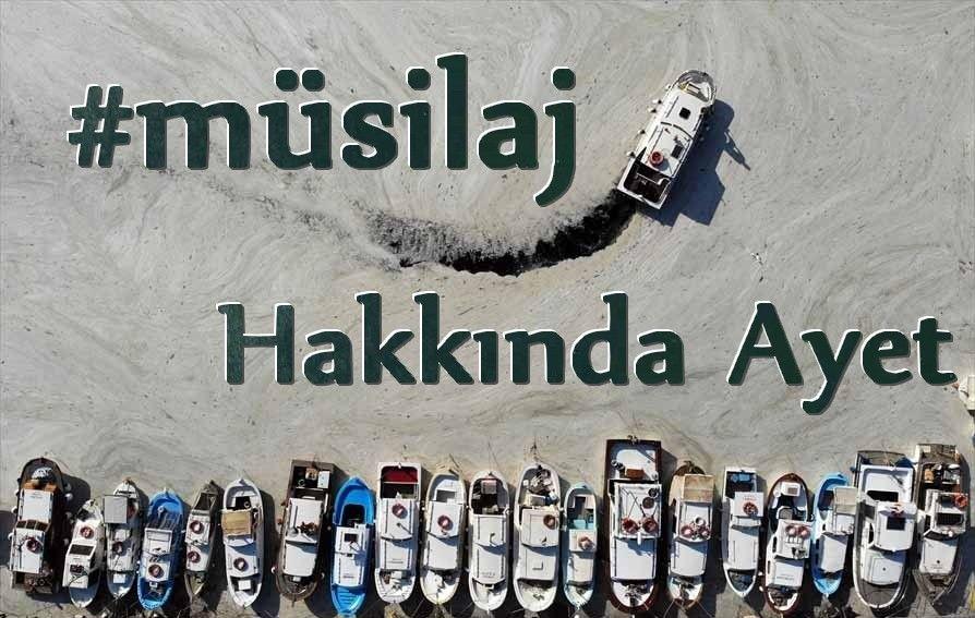 Marmara Denizi'nde Müsilaj Tehlikesi - Gelibolu Gaste