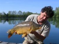 Carp Rider Boilie - Bloody Champion