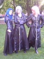 Organisation XIII (2), Kingdom hearts