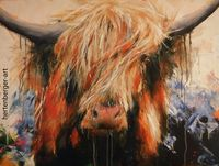 Highland Cattle Joe
