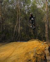 DownHIll - Freeride