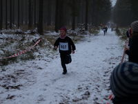 Bilder 1. Crosslauf Weddingstedt 2016