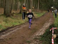 Bilder Crosslauf Weddingstedt 14.01.2017