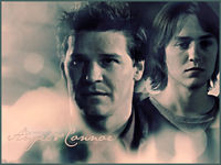 FOREVER ANGEL_DAVID BOREANAZ