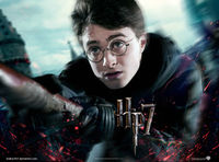 Harry Potter 7 Wallpaper
