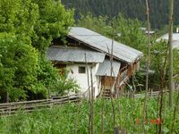artvin evi