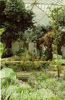resimiks.tr.gg/Galeri/kat-11.htm