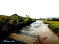 talay muratnehri
