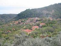 Ayancık Resimleri yesilyurt köyü