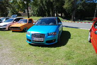 www.the-drivers-vw-audi-club.at/Unsere-Treffen-FOTO-gr-s/kat-11-17.htm