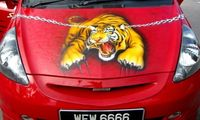Honda Jazz Tiger