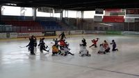 Training mit den Bavarian Lions